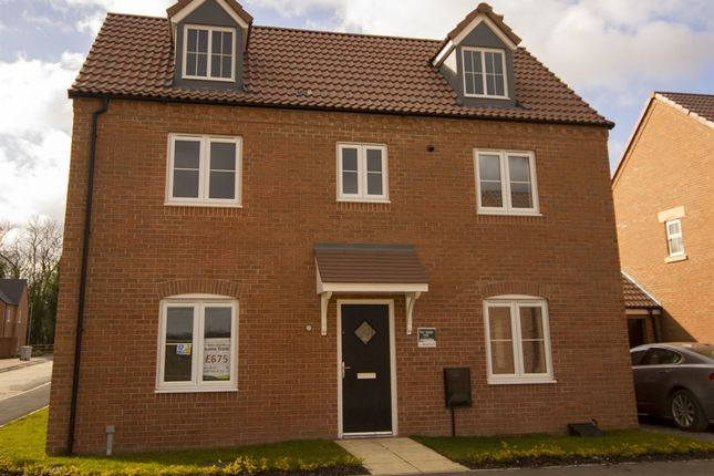 """Thumbnail Detached house for sale in """"The Balderton"""" at Lavender Way, Newark"""