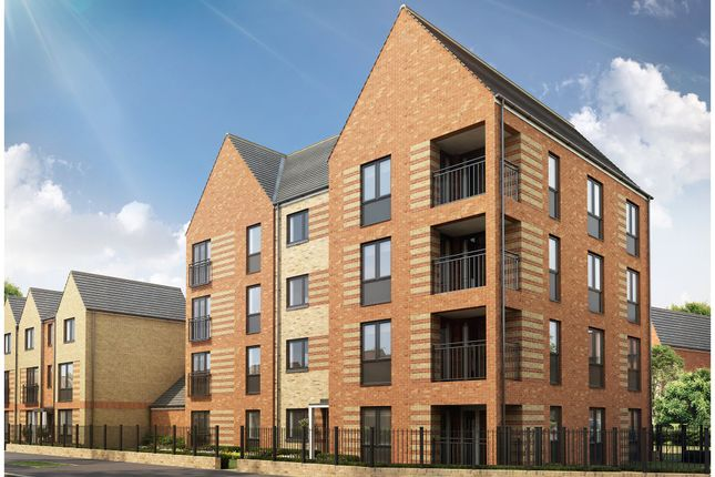 "Thumbnail Flat for sale in ""Amble"" at Pedersen Way, Northstowe, Cambridge"