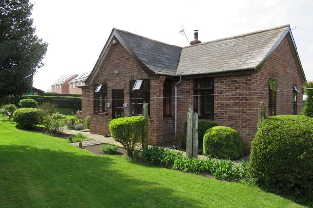 Thumbnail Detached bungalow for sale in Church Road, Thurlton, Norwich