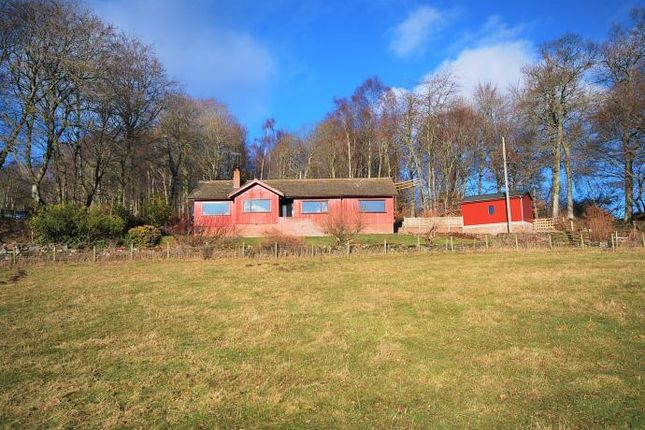 Thumbnail Lodge to rent in Ardarroch, Laggan Hill, Crieff
