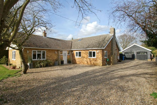 Thumbnail Detached bungalow for sale in The Street, Great Livermere, Bury St. Edmunds