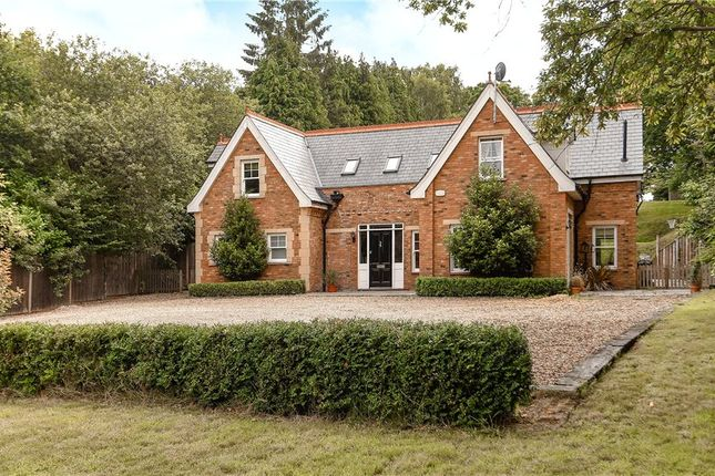 Thumbnail Detached house for sale in Broadway Road, Windlesham, Surrey
