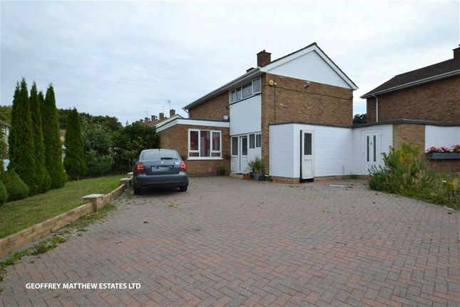 Thumbnail Detached house for sale in Ram Gorse, Harlow, Essex