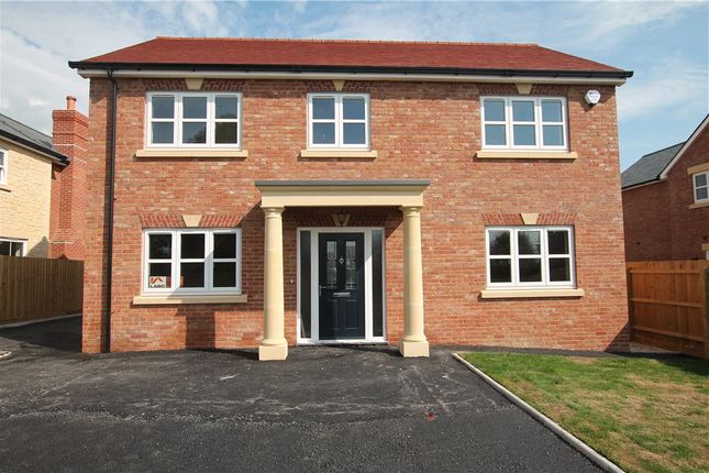 Thumbnail Detached house for sale in Glue Hill, Sturminster Newton