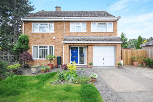 Thumbnail Detached house for sale in Redcastle Road, Thetford