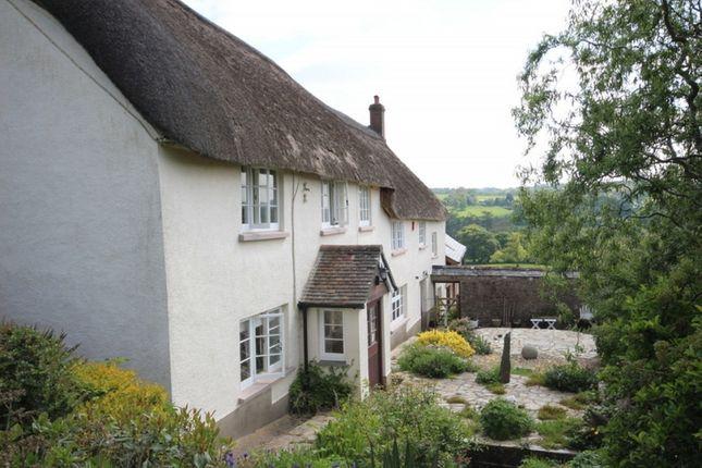 Thumbnail Farmhouse to rent in Bridge Reeve, Chulmleigh