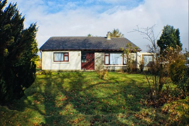 Thumbnail Detached bungalow to rent in Cross Inn, Llanon