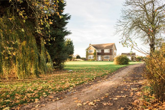 Thumbnail Detached house for sale in Scotts Hill, Southminster, Essex