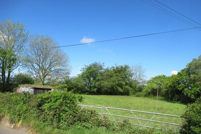 Site 2 of Dolton, Winkleigh, Devon EX19