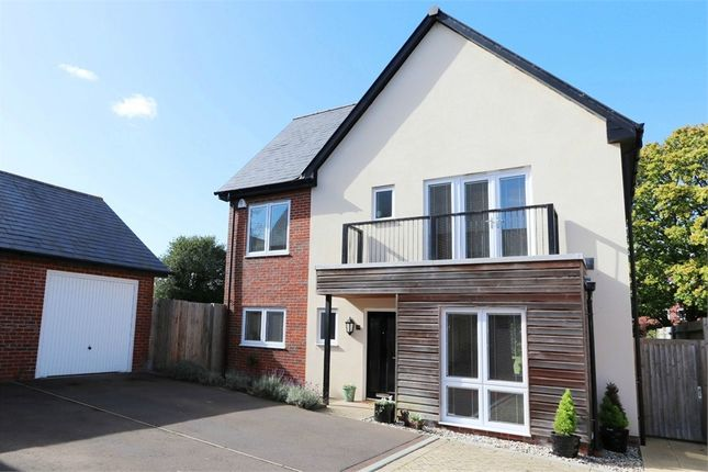 Thumbnail Detached house for sale in Buttercup Drive, Polegate, East Sussex