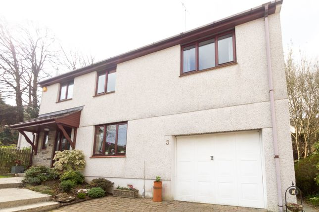 Thumbnail Detached house for sale in Cole Moore Meadow, Tavistock