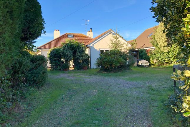 Thumbnail Detached house for sale in Ipswich Road, Brantham, Manningtree