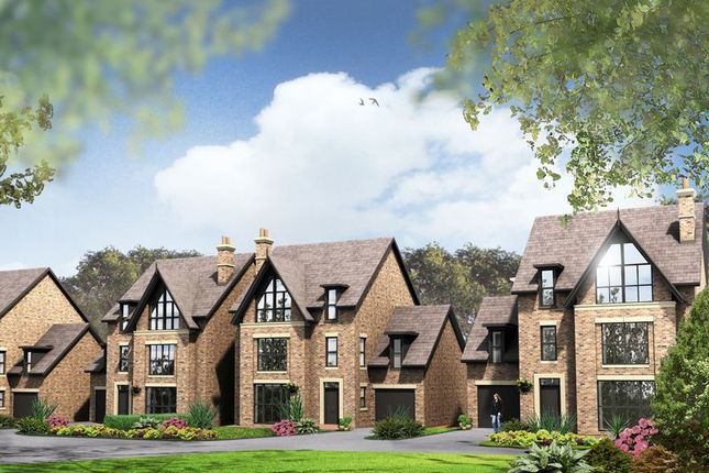 Thumbnail Detached house for sale in Gower Street, Newcastle-Under-Lyme