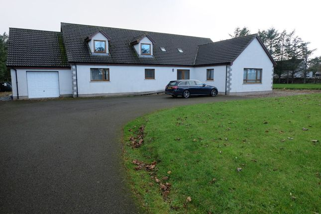 Thumbnail Detached house for sale in Crescent Street, Halkirk