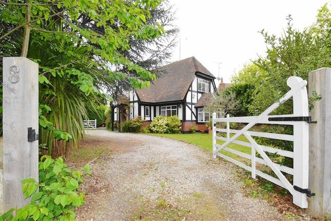 Thumbnail Detached house for sale in Hall Road, Rochford, Essex