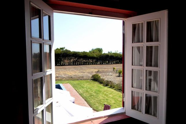 Farm for sale in L337, 4 Hectares Farm And House In Alentejo's Coast, Portugal, Portugal