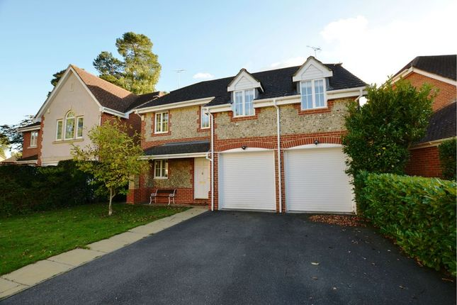 Thumbnail Detached house to rent in Ridgewood Drive, Frimley, Camberley