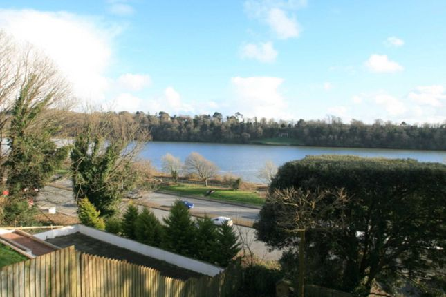 Thumbnail Detached house for sale in Dunclair Park, Laira, Plymouth