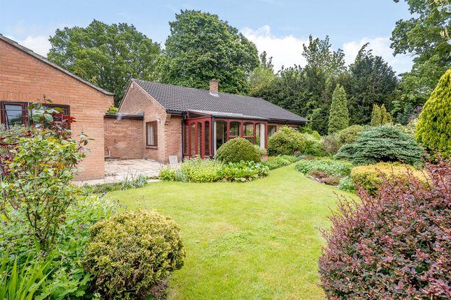 Thumbnail Detached bungalow for sale in Poplar Avenue, Norwich