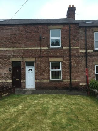 Thumbnail Terraced house to rent in Spittal Terrace, Hexam, Northumberland