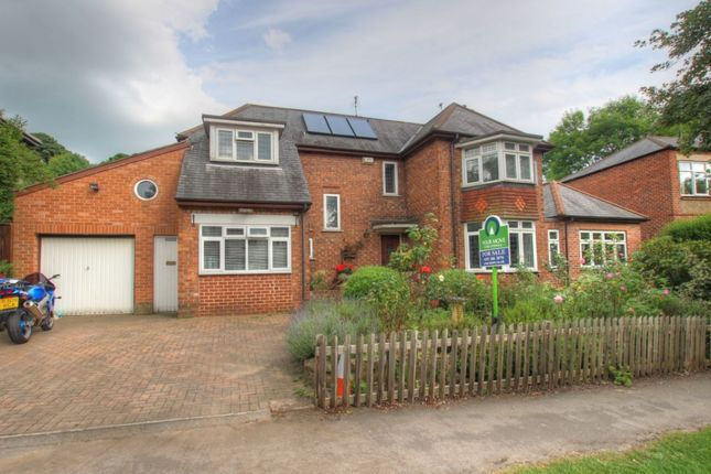 Thumbnail Detached house to rent in Whinney Hill, Durham