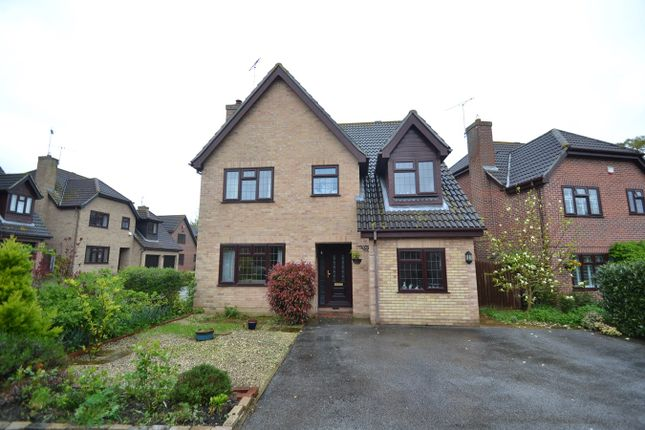 Thumbnail Detached house for sale in Merlin End, Colchester