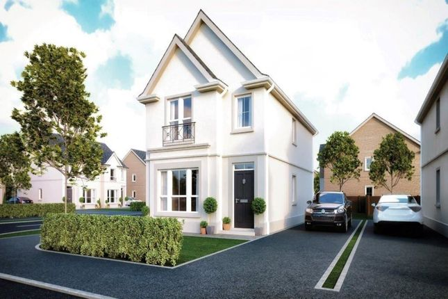 Thumbnail Detached house for sale in Hadlow, High Bangor Road, Donaghadee