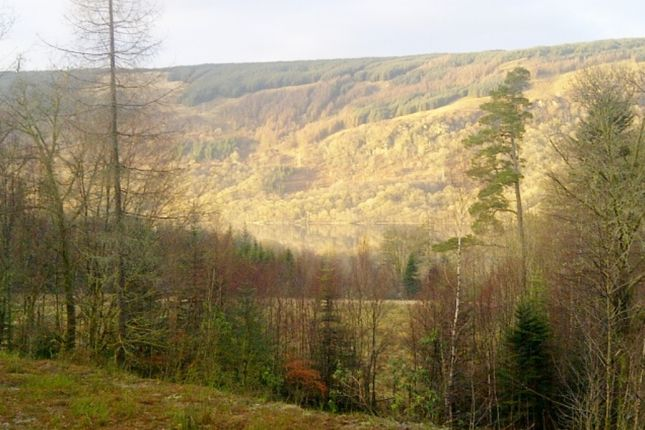 Thumbnail Land for sale in Plot 1 Pheasant Field, Cairndow