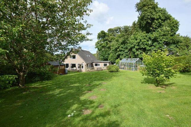 Thumbnail Detached house for sale in High Powburn, Powburn, Alnwick