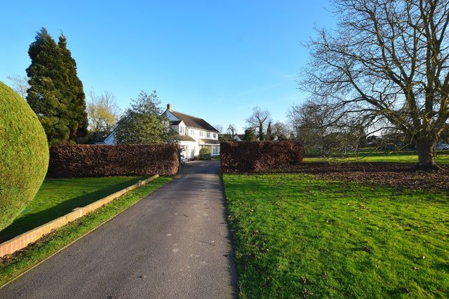 Thumbnail Detached house for sale in Grove Field, Braintree