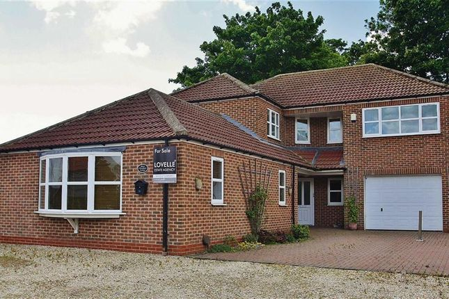 Thumbnail Property for sale in Pond Side, Wootton, Ulceby