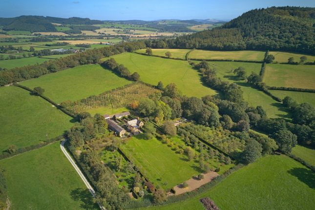 Thumbnail Detached house for sale in Stansbatch, Leominster