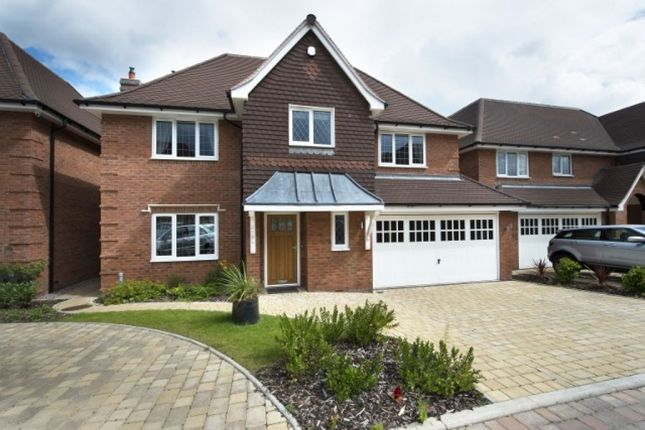 Thumbnail Detached house for sale in Beech Hill Close, Wylde Green
