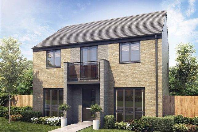 "Thumbnail Detached house for sale in ""The Chedworth"" at Aykley Heads, Durham"