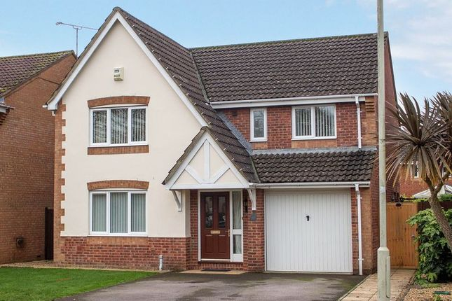 Thumbnail Detached house for sale in Larkspur Drive, Marchwood, Southampton
