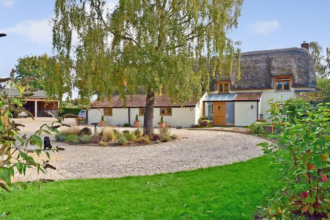 Thumbnail Detached house for sale in Curload, Stoke St. Gregory, Taunton