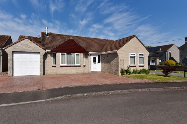 Thumbnail Bungalow for sale in Willow Tree Close, Podimore