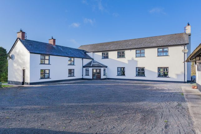 Thumbnail Country house for sale in Ballynahinch Road, Hillsborough, County Down