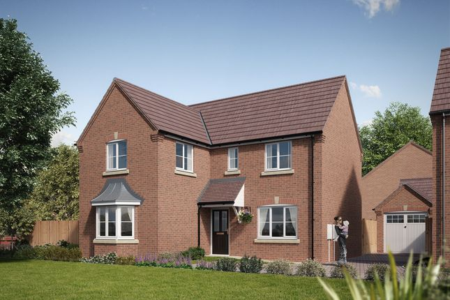 Thumbnail Detached house for sale in Palmerston Drive, Tividale, Oldbury