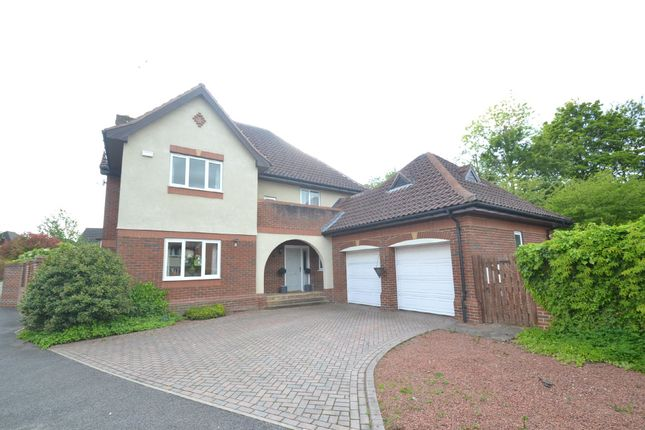 Thumbnail Detached house to rent in The Meadow, Scarcroft, Leeds