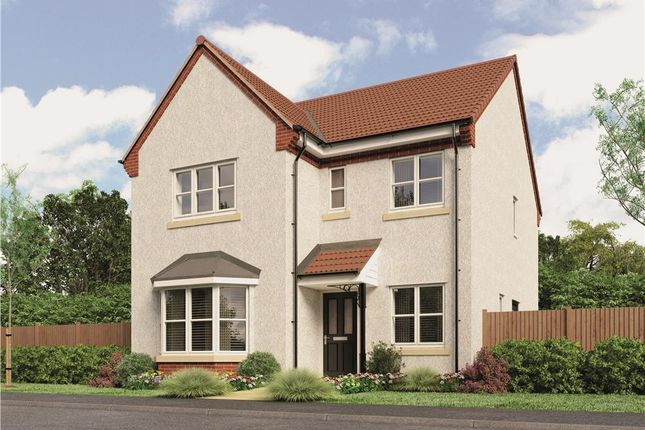 """Thumbnail Detached house for sale in """"Mitford"""" at Loxley Road, Wellesbourne, Warwick"""
