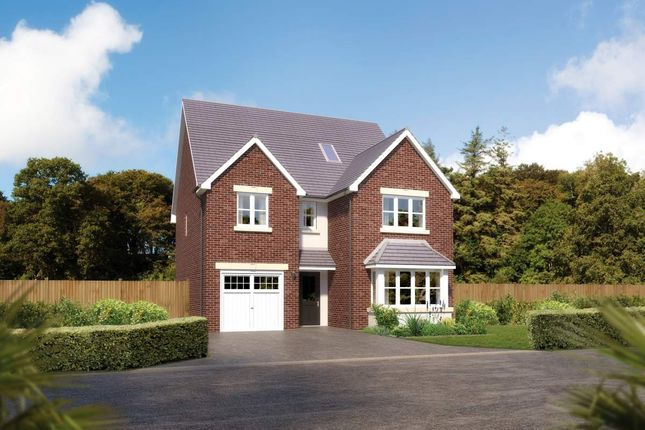 "Thumbnail Detached house for sale in ""Merrington"" at Padgbury Lane, Congleton"