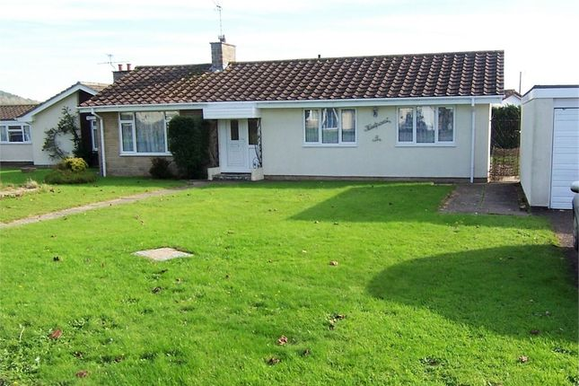 Thumbnail Detached bungalow to rent in Colyford, Colyton, Devon