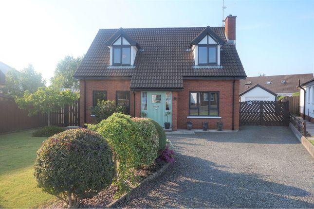 Thumbnail Detached house for sale in Parklands, Antrim