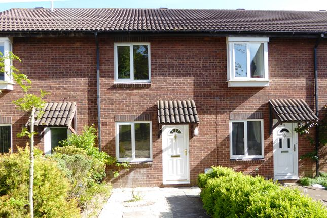 Thumbnail Terraced house to rent in Laburnum Close, Frome