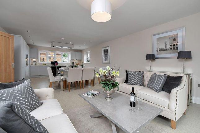 Living Kitchen/Dining Room/Snug
