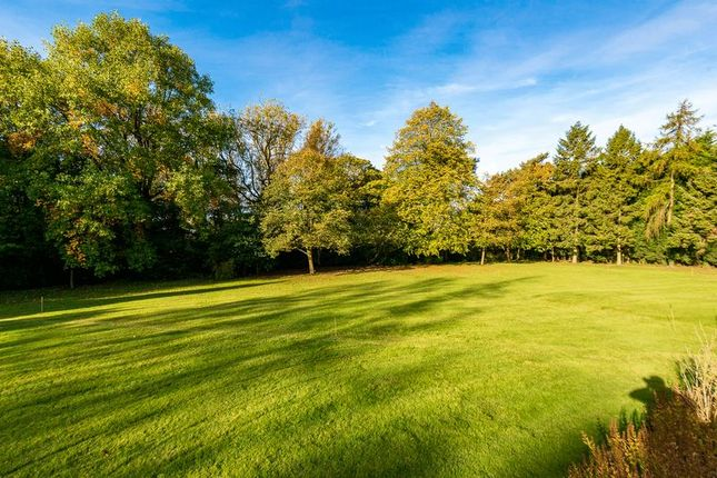 Thumbnail Land for sale in Lancaster Lane, Parbold, Wigan