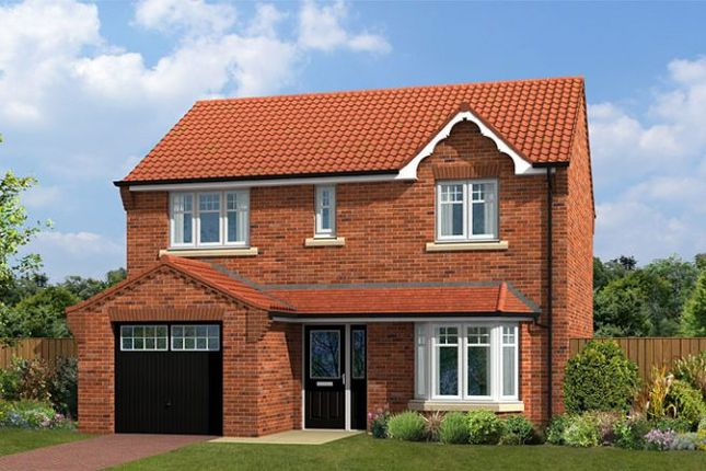 "Thumbnail Detached house for sale in ""The Birkwith"" at Newlands Road, Forest Town, Mansfield"