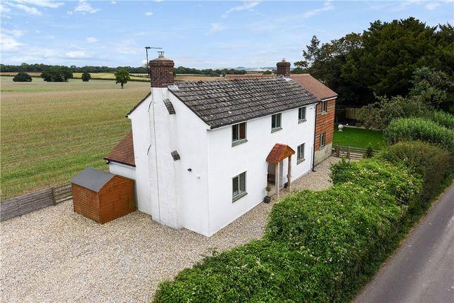 Thumbnail Detached house for sale in Newtown, Farnham, Blandford Forum