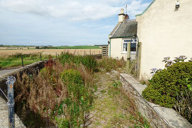 Image 18 of Dove Cottage, Arbikie, Arbroath, Angus (Forfarshire) DD11